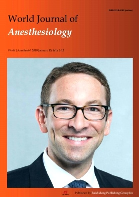 World Journal of Anesthesiology